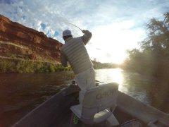 fishing_reports