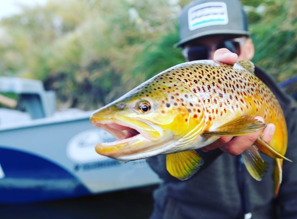 north_platte_river_fly_fishing_info